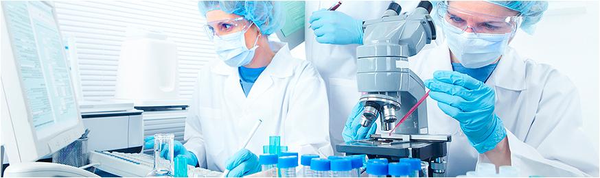 Злокачественные опухоли печени в Германии
